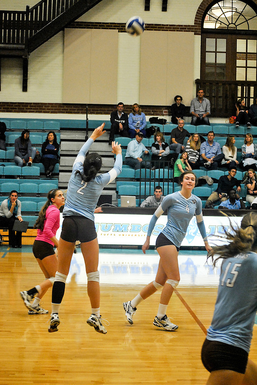 10/18/2013 - Cousens Gym, Tufts Medford campus - Tufts sophomore, Kyra Baum, setter and defensive specialist, passes the ball during the volleyball home game where Tufts defeats Hamilton 25-12. Caroline Geiling / The Tufts Daily
