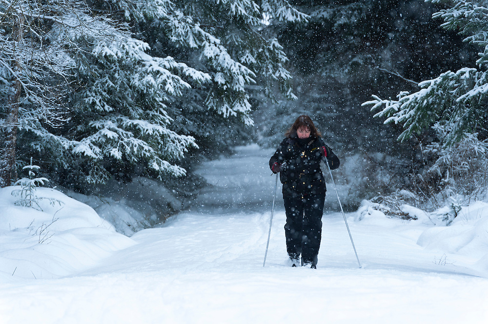 Woman skiing in coniferous forest, Scotland