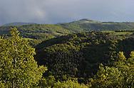 13/05/14 - CEZALIER - PUY DE DOME - FRANCE - Bois dans la Vallee de Rentiere - Photo Jerome CHABANNE