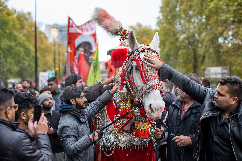 © Licensed to London News Pictures. 04/11/2018. London, UK. Pilgrims gather around a decorated horse as thousands take part in the annual Arbaeen procession in London, which commemorates Imam Husain. Photo credit: Rob Pinney/LNP