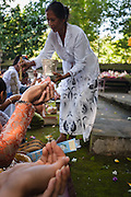 Devotees holding up their hands to be filled with holy water at Pura Luhur Dalem temple, Penebel, Bali