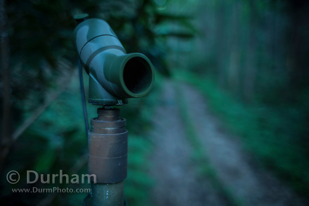 An anabat sensor deployed near a forest service road in the Cherokee National Forest. The sensor will record the ultrasonic calls of bats in the area for several nights, and can determine species based upon call acoustics.