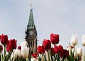 Ottawa-Gatineau, Canada