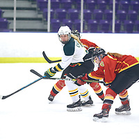 3rd year forward, Elise Endicott (3) of the Regina Cougars during the Women's Hockey Home Game on Sat Feb 02 at The Co-operators Arena. Credit: Arthur Ward/Arthur Images