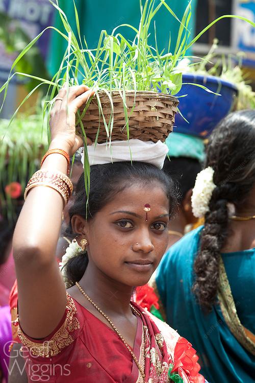Flower festival Coonoor in the Nilgiri district of Tamil Nadu, India