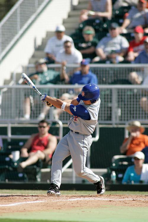 2006 Florida Baseball