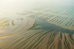 Au nord d'Hillion, l'elevage des moules sur bouchots et une maree verte