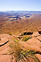 Buck Canyon Overlook, Canyonlands National Park, Utah
