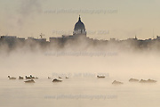With temperatures near zero degrees during a winter sunrise, a flock of geese swim in the steamy, not-yet-frozen waters of Lake Mendota.  In the background is a silhouette of the Wisconsin State Capitol building and downtown Madison, WI skyline..Photo © Jeff Miller 2004 - all rights reserved.www.jeffmillerphotography.com  ?  608-250-2374.Date:  12/04    File#:   D100 digital camera frame 11288