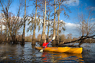 The Cajun Bayou swamps of Louisiana, USA