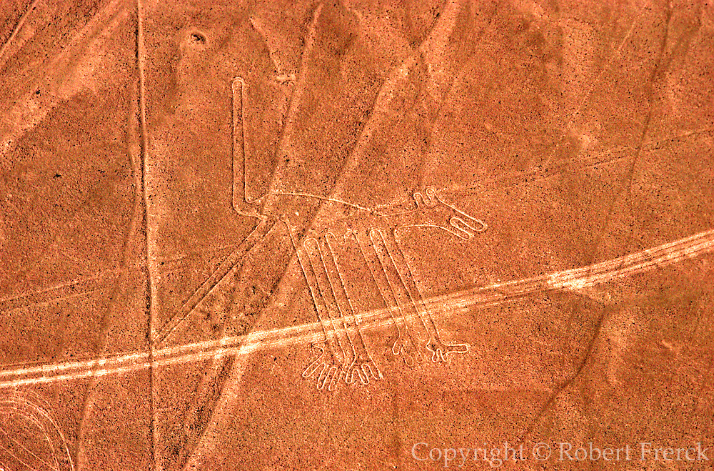 PERU, NAZCA CULTURE Nazca lines, 200AD-800AD; huge drawings in the desert on the south coast of Peru; aerial view of a giant dog