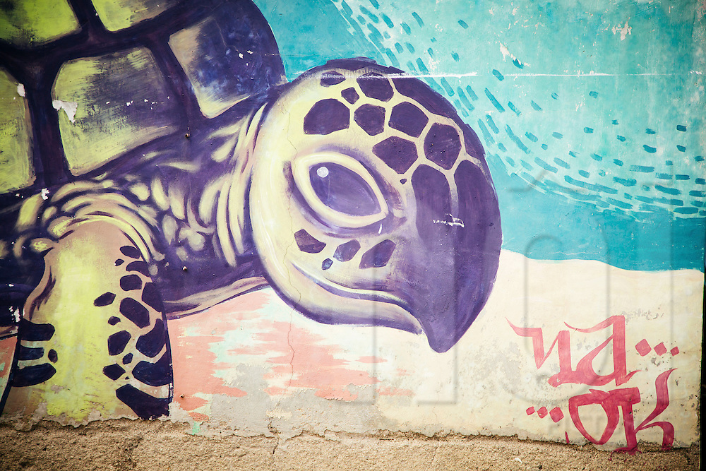 Graffiti of a turtle on a wall of Gili Trawangan, Gili Islands, Lombok, Indonesia, Southeast Asia