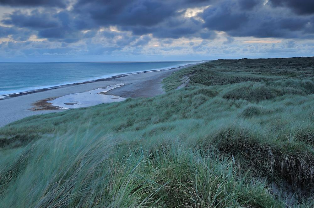 Bøgsted Rende, Tvorup Dune Plantation - National Park Thy, Denmark