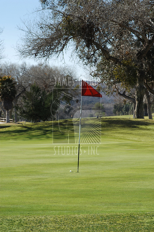 A golf ball sitting next to the flag on an empty putting green