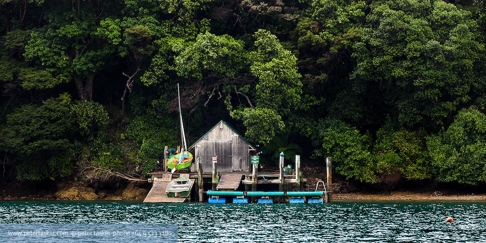 Isolated wooden boat shed in Port Fitzroy harbour.  New Zealand native bush behind.