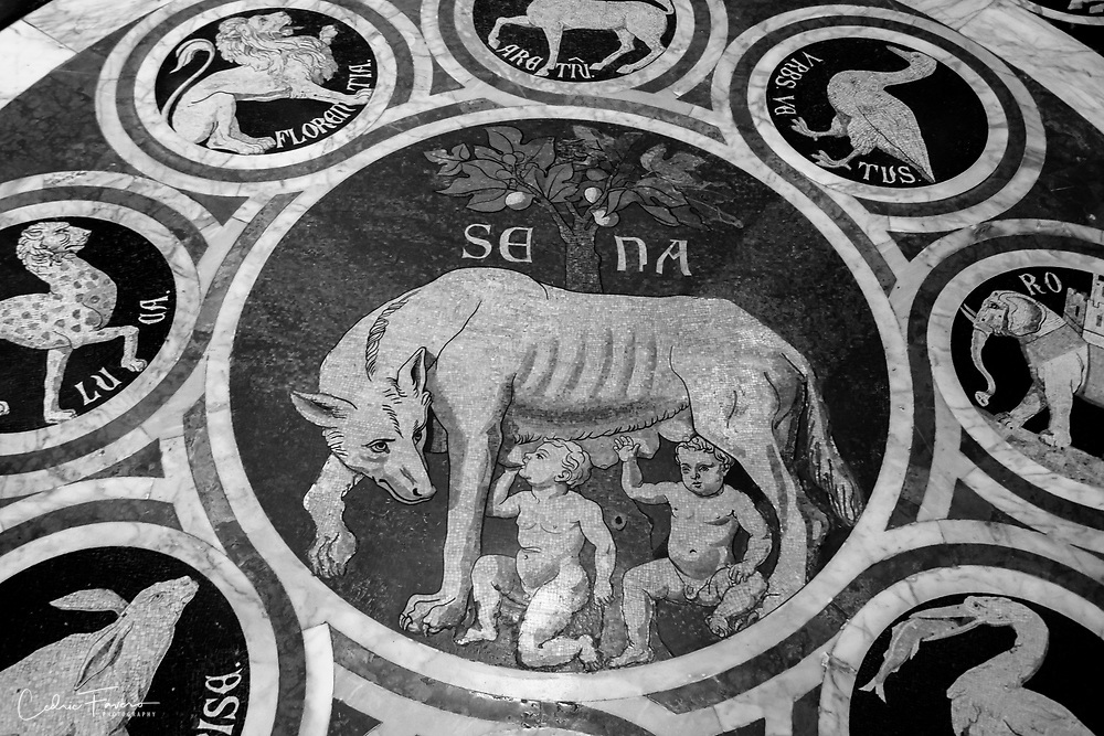 The Sienese She-Wolf Surrounded by the Emblems of Allied Cities (1373)