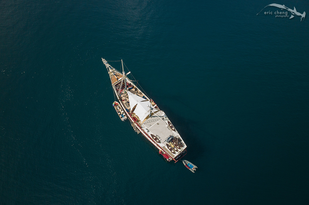Aerial view of the liveaboard dive vessel, M/V Seven Seas, in Horseshoe Bay, Komodo National Park, Indonesia.