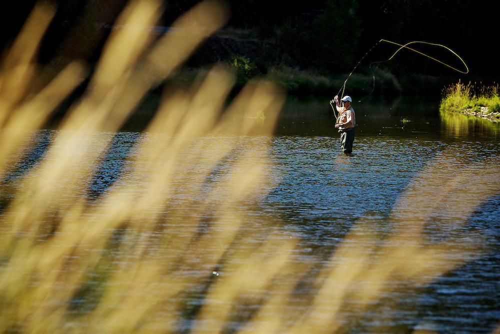 A fly fisherman's line hangs in the air momentarily before being sent back to the water's surface Thursday on the Coeur d'Alene River near Kingston.