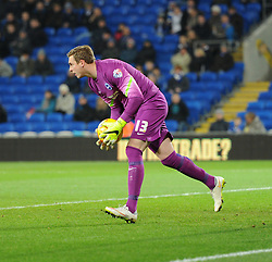 Brighton and Hove Albion's David Stockdale in action during the Sky Bet Championship match between Cardiff City and Brighton & Hove Albion at Cardiff City Stadium on 10 February 2015 in Cardiff, Wales - Photo mandatory by-line: Paul Knight/JMP - Mobile: 07966 386802 - 10/02/2015 - SPORT - Football - Cardiff - Cardiff City Stadium - Cardiff City v Brighton & Hove Albion - Sky Bet Championship