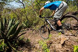 Matt Erbentraut <br /> Mascota, Mexico