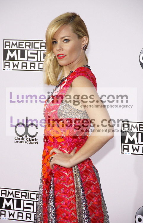 Elizabeth Banks at the 2014 American Music Awards held at the Nokia Theatre L.A. Live in Los Angeles on November 23, 2014 in Los Angeles, California. Credit: Lumeimages.com