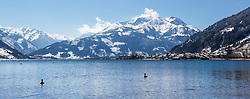 THEMENBILD - Enten schwimmen im Zeller See, aufgenommen am 03. April 2015, am Zeller See, Zell am See, Oesterreich // Ducks swimming in Lake Zell, Zell am See, Austria on 2015/04/03. EXPA Pictures © 2015, PhotoCredit: EXPA/ JFK