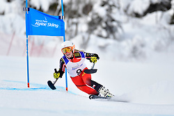 Downhill, TURGEON Frederique, LW2, CAN at the WPAS_2019 Alpine Skiing World Championships, Kranjska Gora, Slovenia