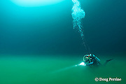 scuba diver swims along foggy boundary layer of hydrogen sulfide river that blankets the halocline at 30m depth in  Cenote Angelita, near Tulum, Yucatan Peninsula, Mexico