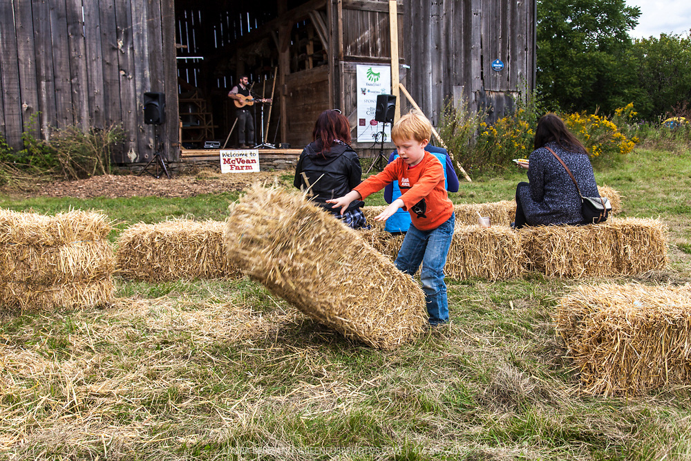 At the McVean Farm Picnic on Sunday, September 15, 2014