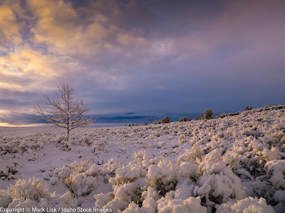 An early fall storm blankets the Avery Table with fresh snow high in the Owyhee Canyonlands, Idaho.