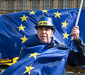 Brexit Protest Westminster 7th March 2018
