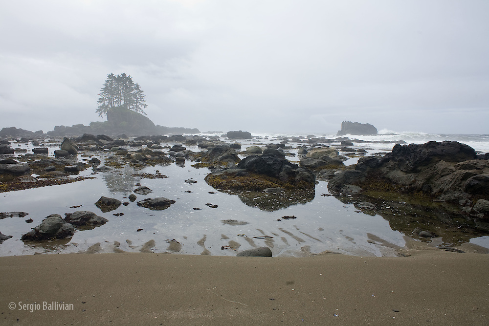 West Coast Trail - Day 5. A light fog engulfs tiny islands that lie exposed and easily accessible at low tide.