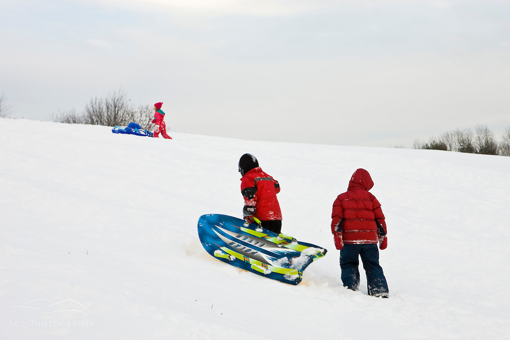 Young boys (age 5) sledding at Wagon Hill Farm in Durham, New Hampshire.  Walking back up the hill.