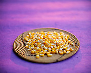 9900-1009 ~ Copyright:  George H. H. Huey ~ Whole corn kernels on Hualapai Indian flat basket.