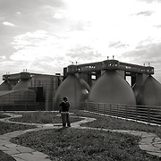 Visitor stands in the middle of the Wildflower sustainable green roof at the Newtown Creek water treatment facility.   Digester Eggs in background.  Landscaping by Alive Structures at the Newtown Creek wastewater treatment complex at 329 Greenpoint Avenue<br /> Greenpoint in Brooklyn