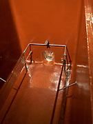 Epoxy-lined fermentation tank