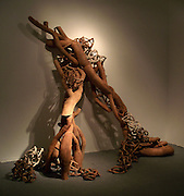 Andrew James Williams, Linking Earth, Fire, and Life, 2012, ceramics, 11.5ftX14ft