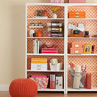 Organized bookshelves