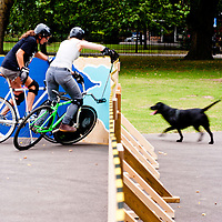London, UK - 24 August 2012: a black dog passes by while two girls play during the Hell's Belles Vol 2, Ladies Bike Polo Tournament in Bethnal Green Gardens.