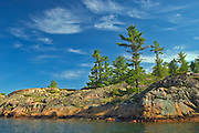 White pine trees and Precambrian Shield rock  along Georgian Bay (Lake Huron)<br />Killarney Provincial Park<br />Ontario<br />Canada