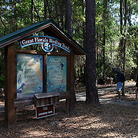 Great Florida birding trail signage along the Old Florida Heritage Parkway in Micanopy, Florida. (AP Photo/Alex Menendez) Florida scenic highway photos from the State of Florida. Florida scenic images of the Sunshine State.