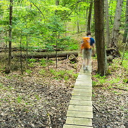 A hiker crosses a stream on a wooden bridge in a forest in Epping, New Hampshire.