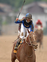 Curlin with Robby Alverado aboard wins the 132nd Preakness Stakes at Pimlico Race Course in Baltimore, MD