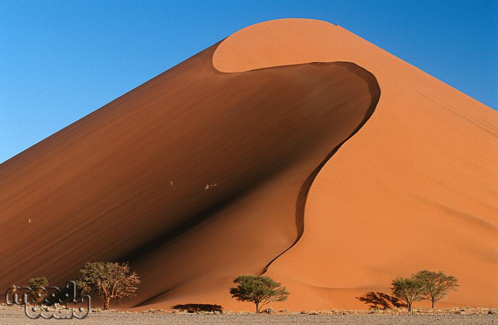 Namibia Namib Desert sand dunes