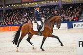 Hengstencompetitie Gelders Paard '17