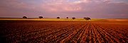 SPAIN, AGRICULTURE Castile and Leon plowed fields west of Salamanca