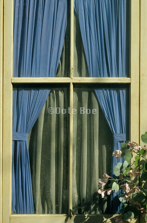 Window with blue and green curtain