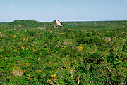 MEXICO, MAYAN, QUINTANA ROO Coba; overview of Great Pyramid