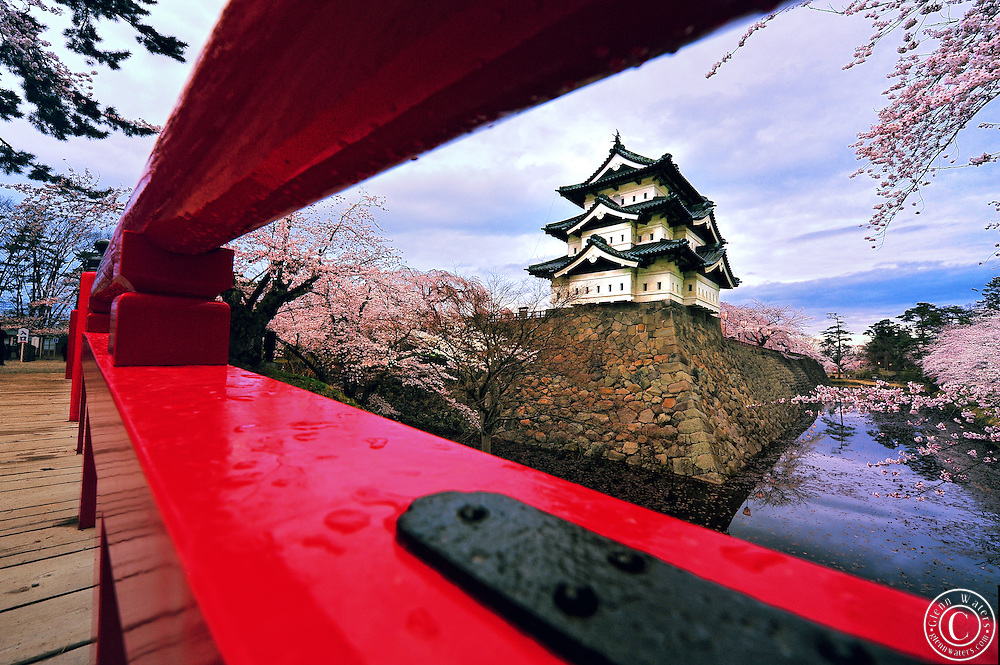Hirosaki castle as seen from between the rails of the red lacquered rails of the bridge in spring time. Cherry blossoms line the moat that surrounds the castle.<br />