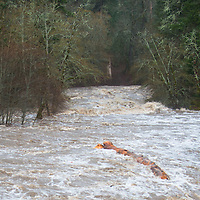 With record water levels for December, kayakers test the White Salmon River, near Husum, Washington.